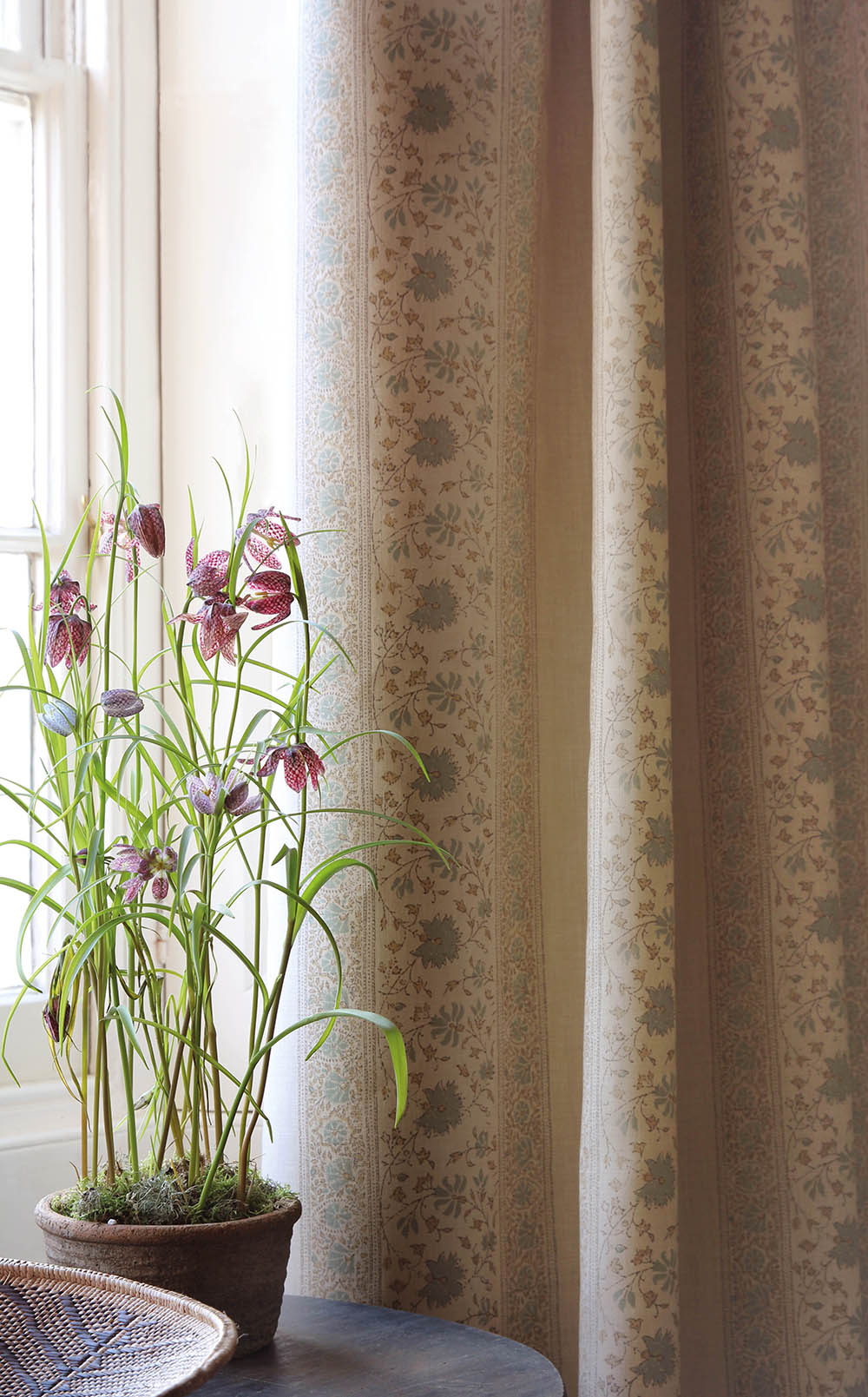 Freya Aqua Curtains